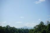 Thailand, Forest, Tree, forest, Front or Back Yard, Sky