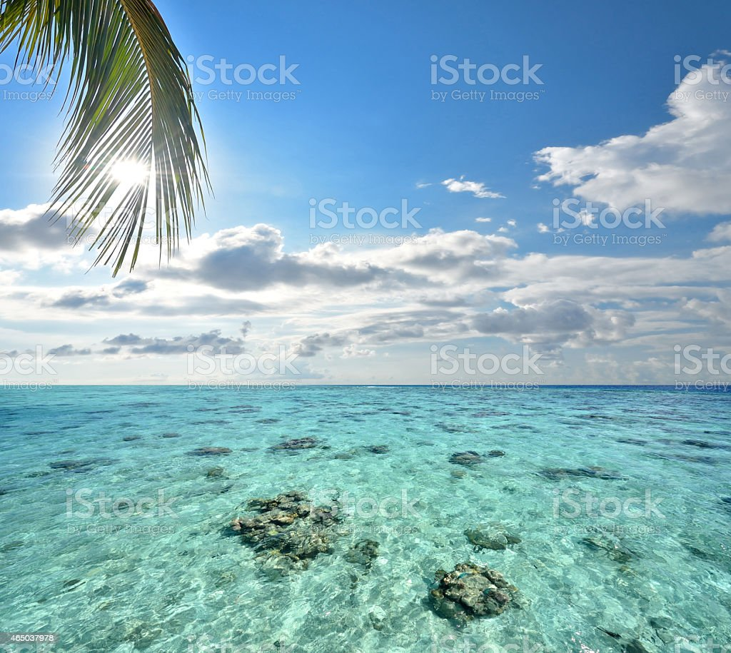 Green tropical lagoon with cloudy sky background stock photo
