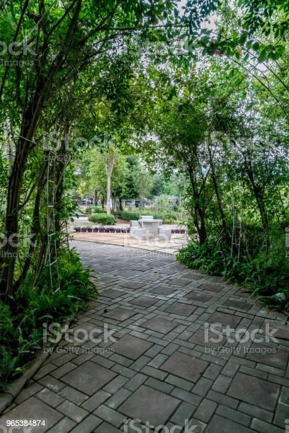 Zielony Tunel Roślin - zdjęcia stockowe i więcej obrazów Betonowy