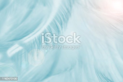 istock Green turquoise color trends chicken feather texture background,Light orange 1162470100