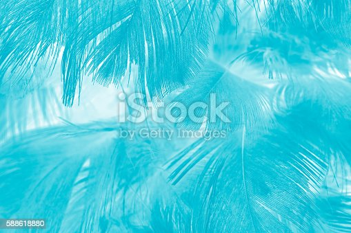 istock Green turquoise vintage color trends chicken feather texture background 588618880
