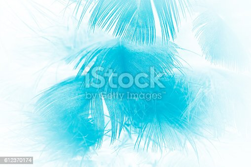 istock green turquoise vintage color trends chicken feather texture background 612370174