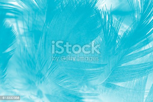 istock green turquoise vintage color trends chicken feather texture background 613332358