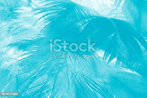 istock green turquoise vintage color trends chicken feather texture background 614010692