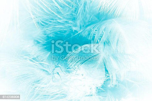 istock green turquoise vintage color trends chicken feather texture background 614206908