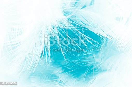 istock green turquoise vintage color trends chicken feather texture background 614349388
