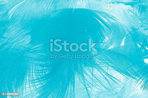 istock green turquoise vintage color trends chicken feather texture background 614866084