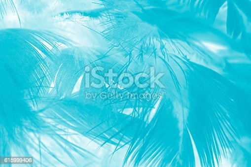 istock green turquoise vintage color trends chicken feather texture background 615999406