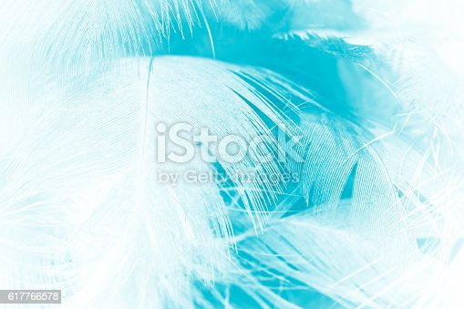 istock green turquoise vintage color trends chicken feather texture background 617766578