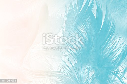istock green turquoise vintage color trends chicken feather texture background 841064074