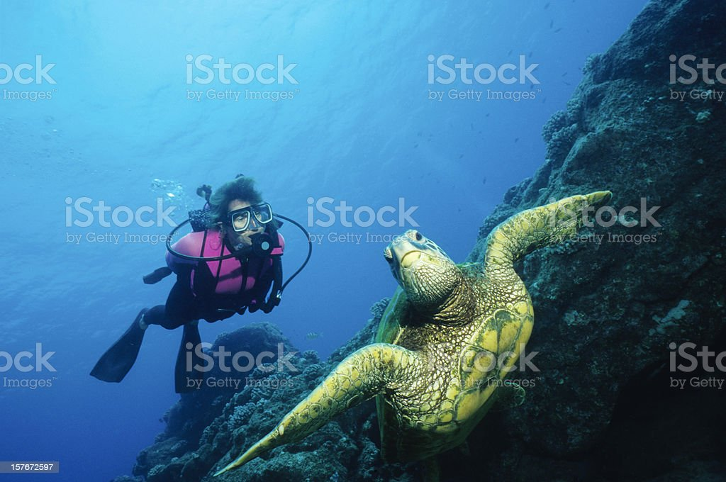 Green Turtle and Woman stock photo