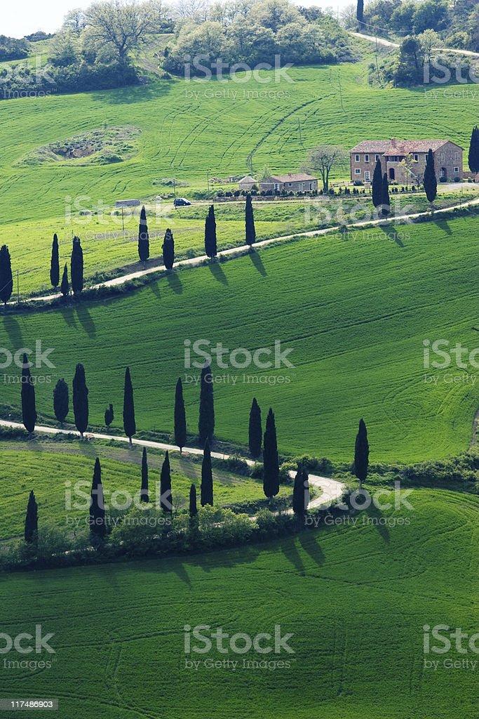 green tuscany royalty-free stock photo