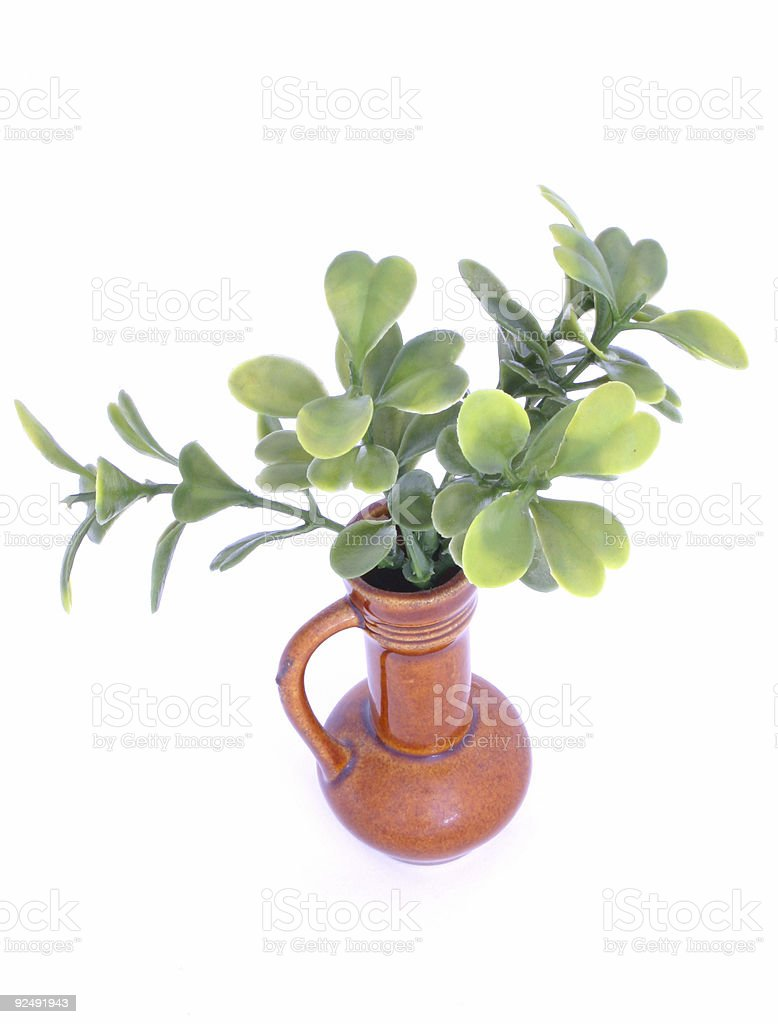green twig in a vase royalty-free stock photo