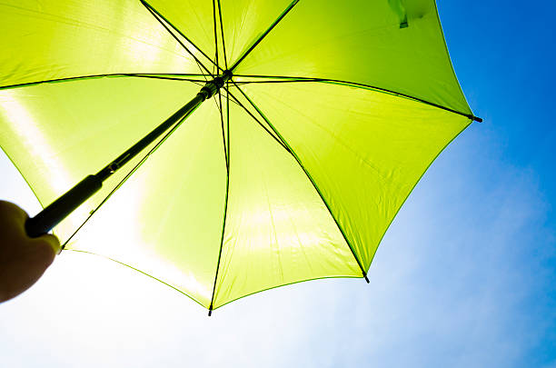 Green umbrella and blue sky – Foto