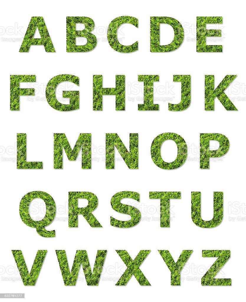 green upper case letter stock photo