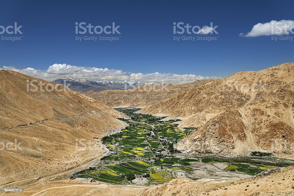 Green valley among desert mountains stock photo