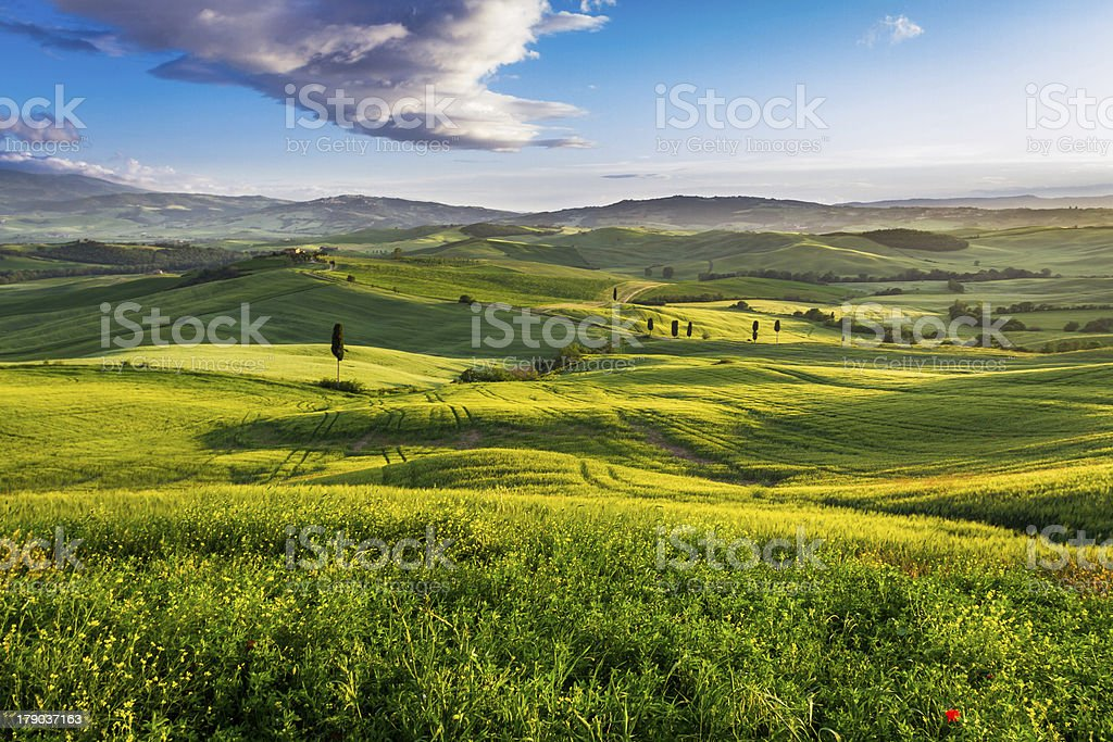 Green valley and mountains at sunset in Tuscany royalty-free stock photo
