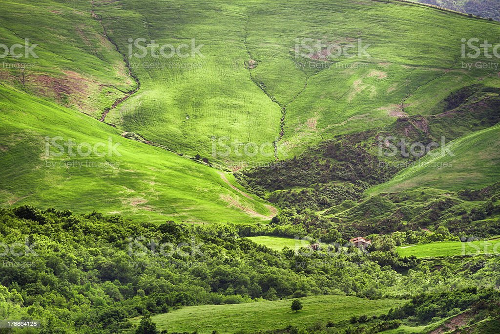 Green valley between the hills in Tuscany royalty-free stock photo