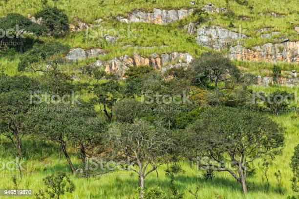 Green valley in malanje, Angola. Africa.