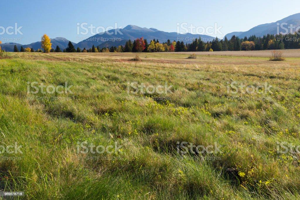 Green Valley stock photo