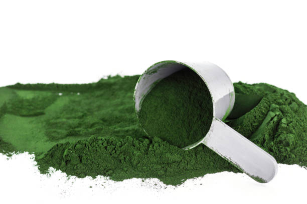 Green vegetarian protein or spirulina powder Green vegetarian protein or spirulina powder on white background chlorophyll stock pictures, royalty-free photos & images