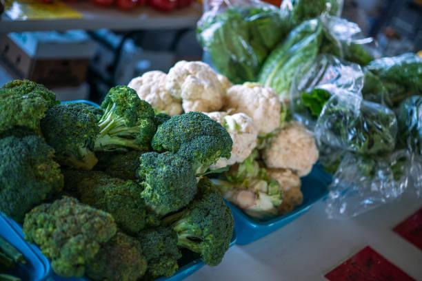 Green Veggies stock photo