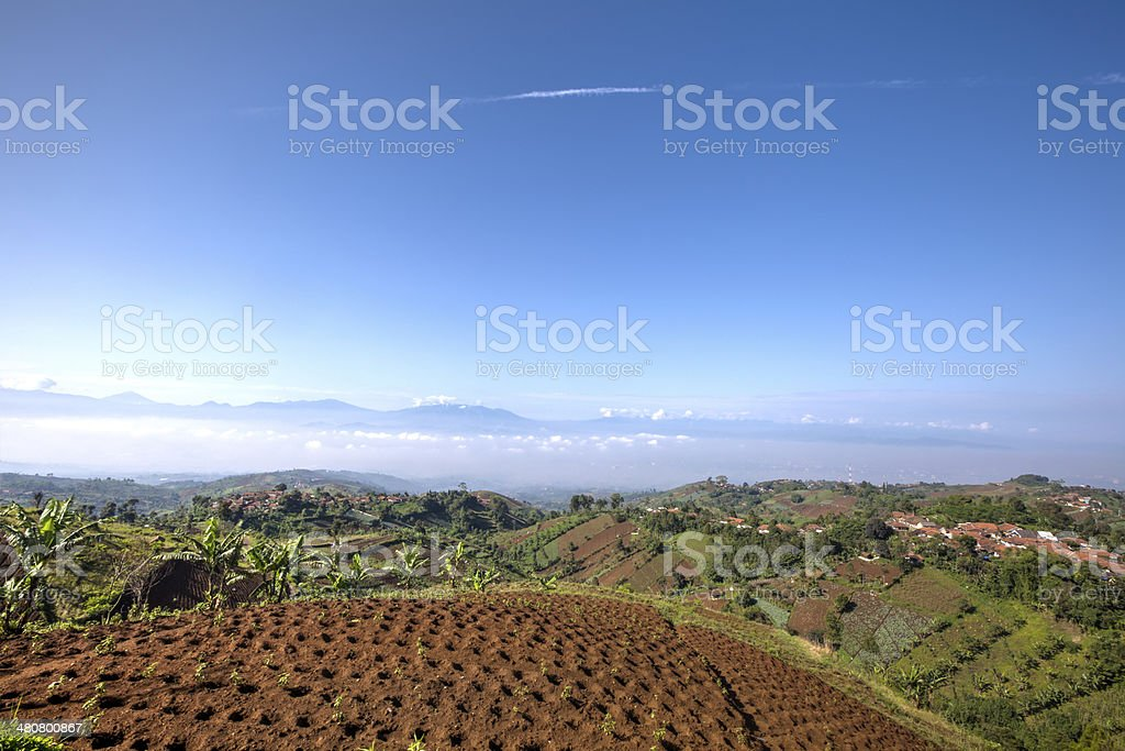 Green View of hills and farms in South Asia Indonesia royalty-free stock photo