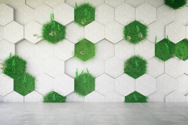 green wall - environmental conservation stock photos and pictures