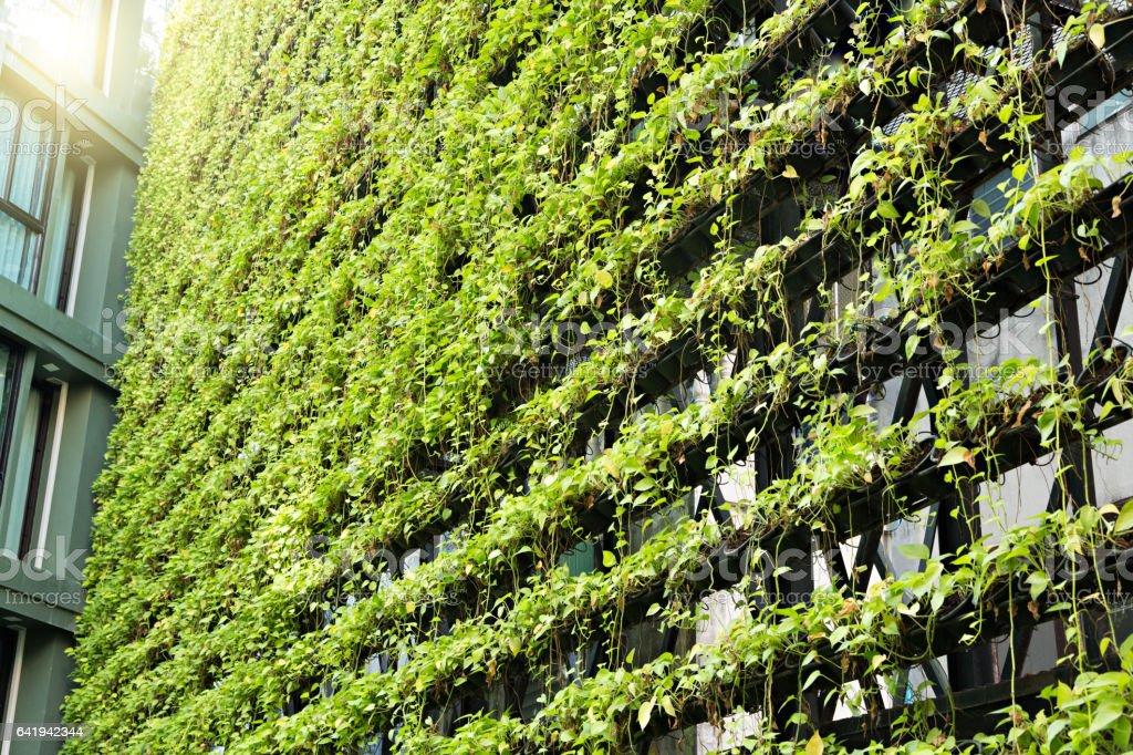 Genial Green Wall U2013 Vertical Garden U2013 BioWall Royalty Free Stock Photo