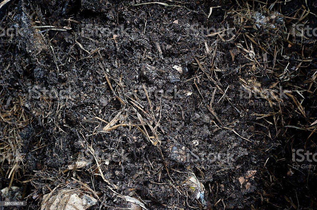 Green Waste Inside Compost Bin stock photo
