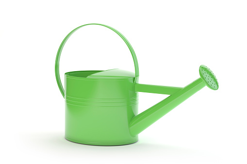 Green watering can isolated on white, 3d illustration