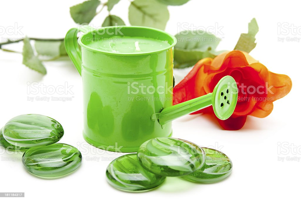 Green watering can with rose stock photo