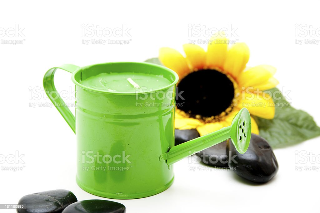 Green watering can with sunflower stock photo