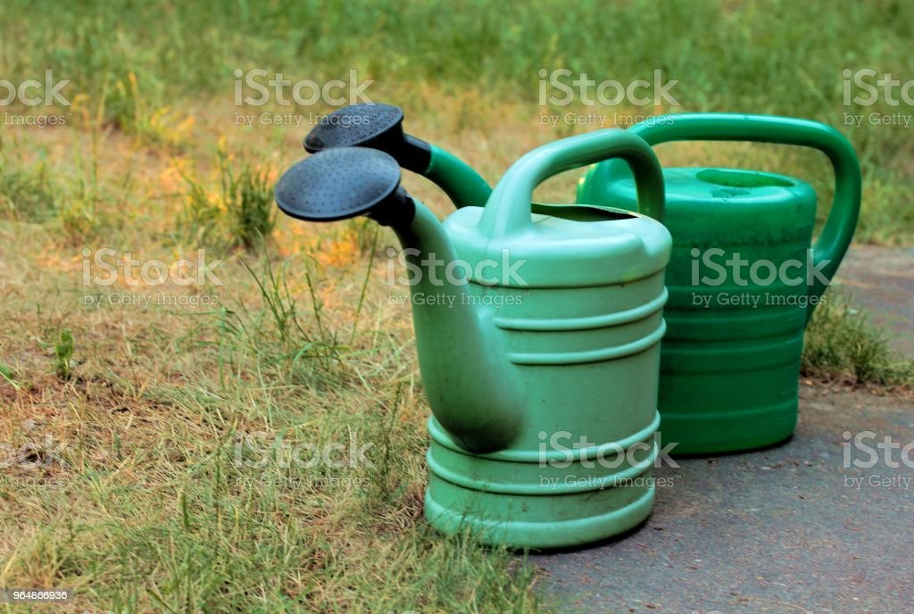 green watering cans on the lawn royalty-free stock photo