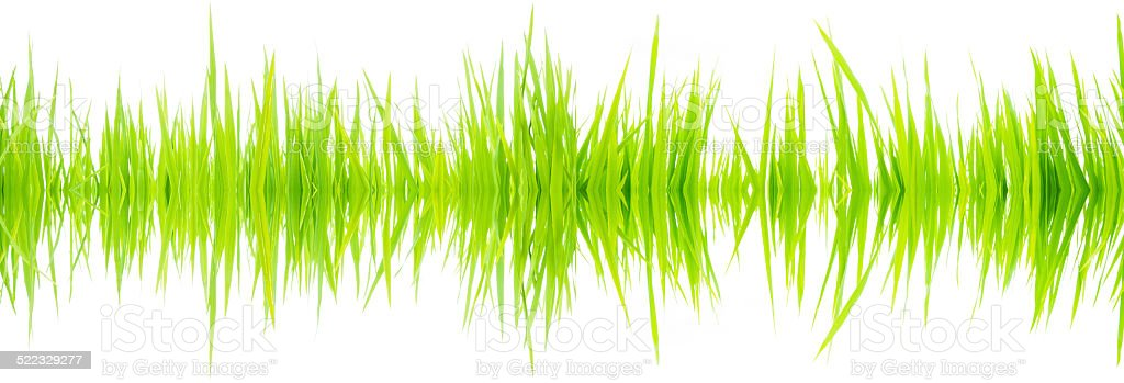 Green waves stock photo