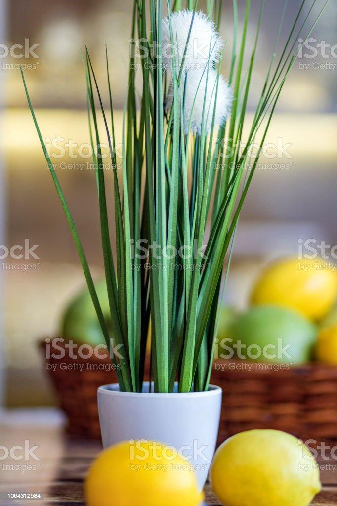 Green Wheatgrass and Fruit stock photo