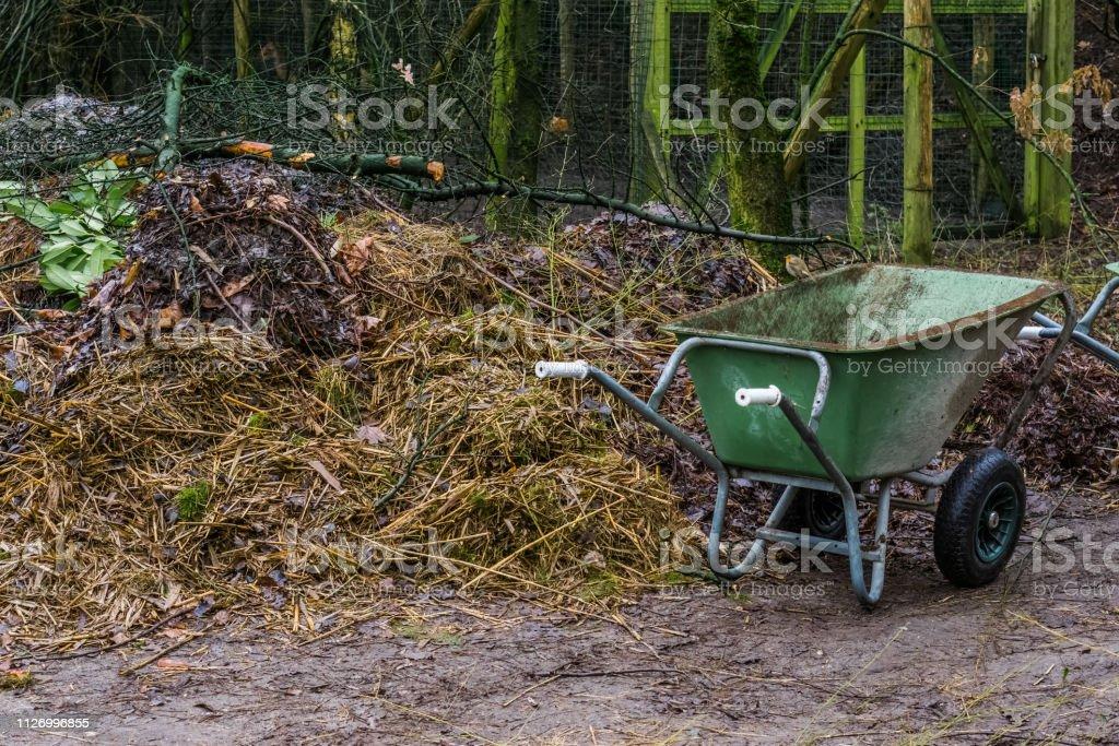 green wheelbarrow next to a compost pile, work place in the garden,...