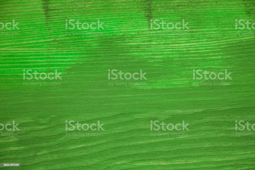 Green wood texture. Green wood background. Closeup view of green wood texture and background. Abstract background and texture for designers. Texture of green vintage handmade table. Rustic table. royalty-free stock photo