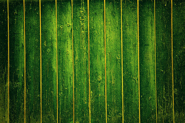 Green wood texture with an array of knots Green wood texture with an array of knots and ring lines arcane stock pictures, royalty-free photos & images