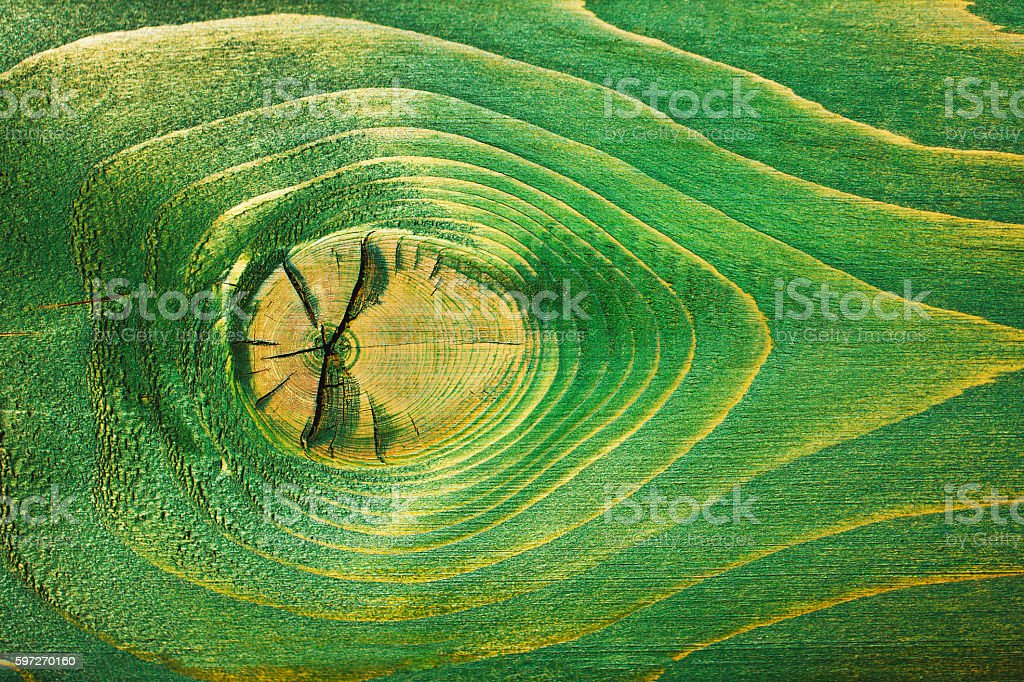 Green wooden background royalty-free stock photo