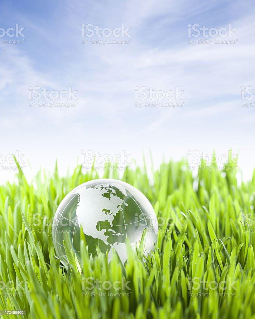 Globe in the grass.Similar photographs from my portfolio:
