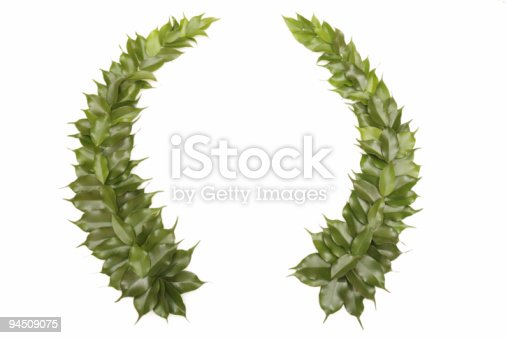 istock Green wreath isolated on white 94509075