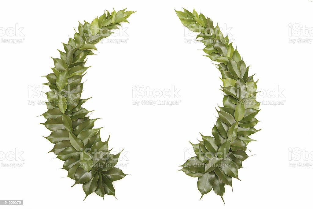 Green wreath isolated on white stock photo