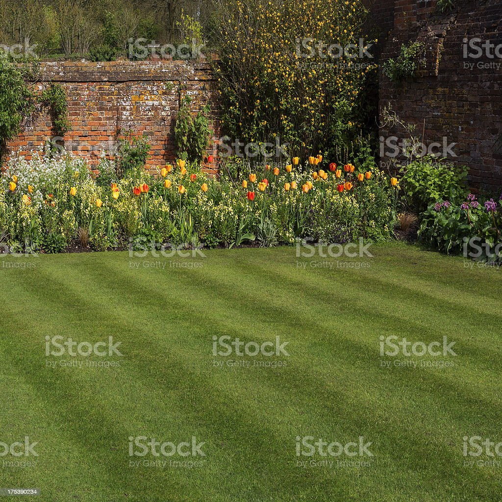 Green yard with garden and wall border stock photo