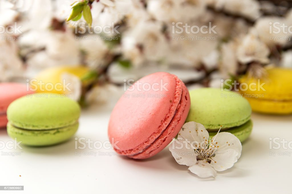 Green, yellow, pink macarons on white background against of blossoming apricot branch stock photo