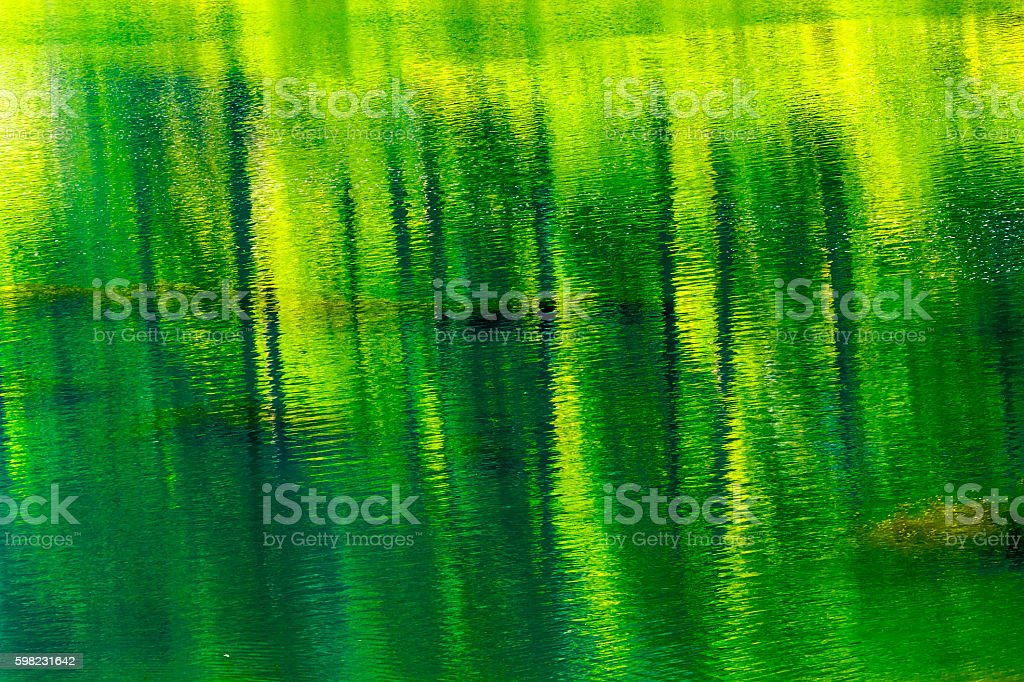 Green Yellow Summer Water Reflection Abstract Wenatchee River Washingtton foto royalty-free