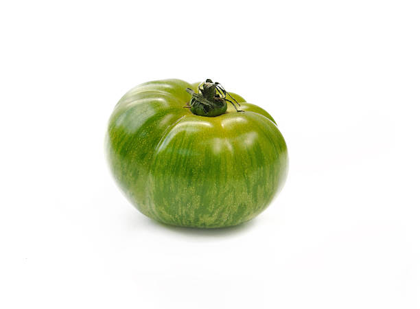 Verde tomate cebra - foto de stock