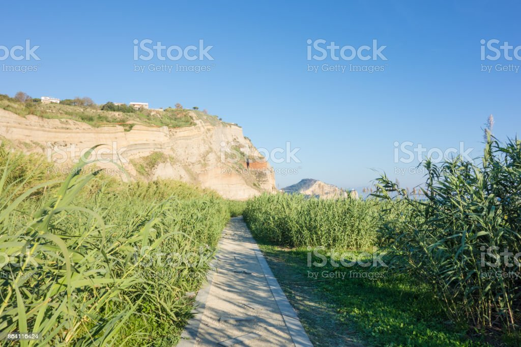 Greenery in landscape in the bay of Naples, Italy royalty-free stock photo