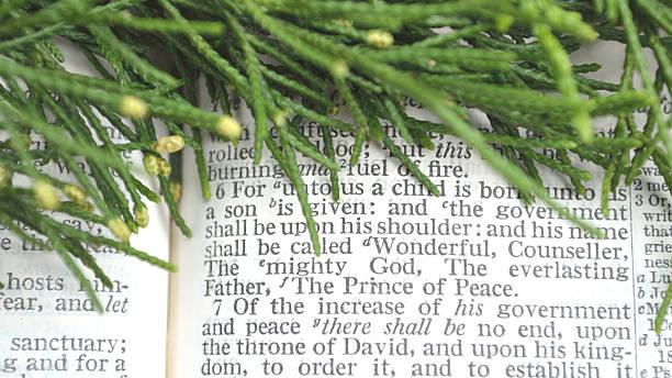 grün mit weihnachten schriften eingemeißelt, isaiah 9 - adventgeschichte stock-fotos und bilder