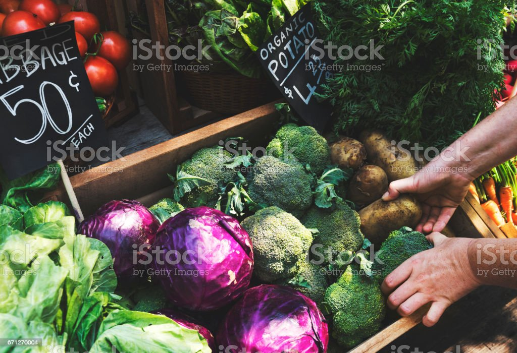 Greengrocer preparing organic fresh agricultural product at farmer market stock photo